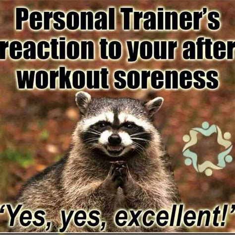 Trainer Meme - the 25 best ideas about personal trainer humor on