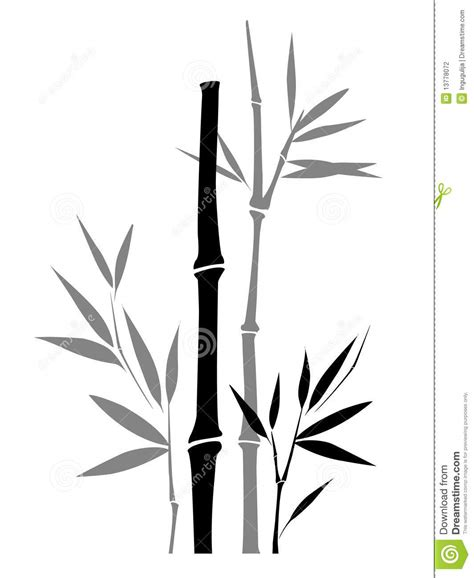 Drawing Of A Bamboo Tree by Bamboo Stock Photography Image 13778072