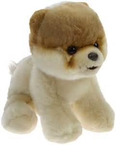 Gund boo the world s cutest dog plush 9 quot free shipping
