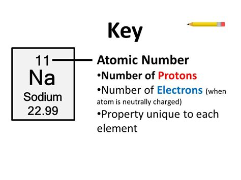 Number Of Protons In Sodium by The Periodic Table Ppt