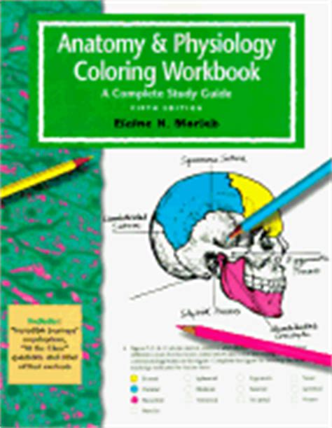 anatomy and physiology coloring workbook answers figure 16 5 anatomy physiology coloring workbook a complete study