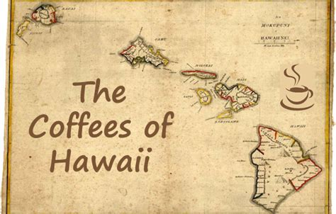 Coffees of Hawaii: An Island Guide   Kona Coffee Buzz