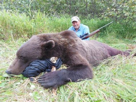 Alaska Records Record Grizzly Killed In Alaska Pictures To Pin On Pinsdaddy