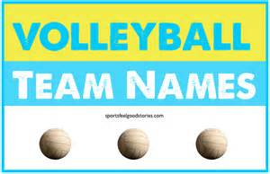 Backyard Fires Volleyball Team Names Good Funny Clever And Best
