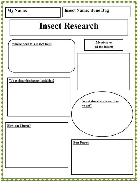 Research Paper Graphic Organizer High School by Insect Research Graphic Organizer Technology Lab Graphic Organizers Computers