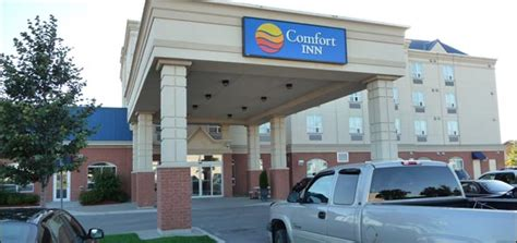 comfort inn downtown toronto comfort inn topflight drive toronto hotels and motels