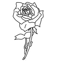 roses to color free printable roses coloring pages for