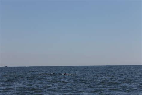 flamingo fishing boat brooklyn ny brooklyn living brooklyn fishing