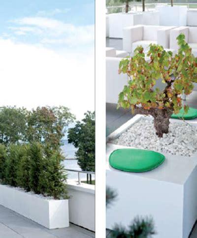 catalogo fiori e piante catalogo vasi per fiori e piante hw style