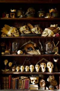 Curiosity Cabinets Cabinets Of Curiosities 37 Images Church Of