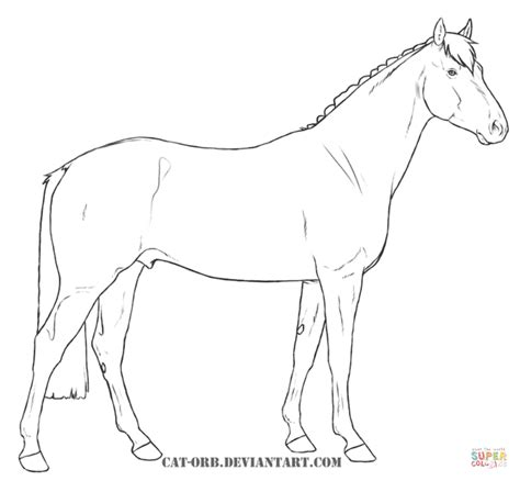horse coloring pages games online spirit horse coloring games coloring pages