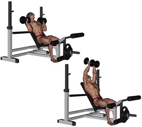 Developpe Incline Avec Haltere by Musculation Pectoraux D 233 Velopp 233 Assis Sur Plan Inclin 233