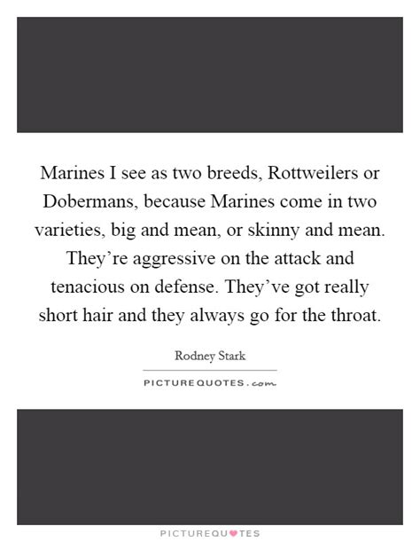 rottweiler varieties marines i see as two breeds rottweilers or dobermans because picture quotes
