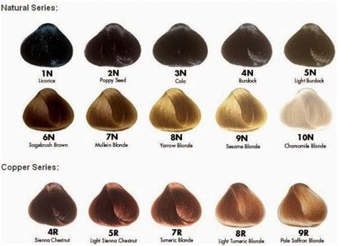 naturcolor hair color gaspinha importados colora 231 227 o sem am 244 nia
