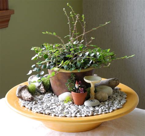 miniature indoor plants when pottery barn meets miniature gardening black thumbs