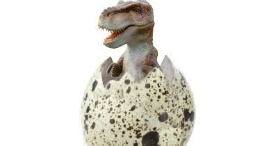 hatching dinosaur eggs growing  jeweled rose