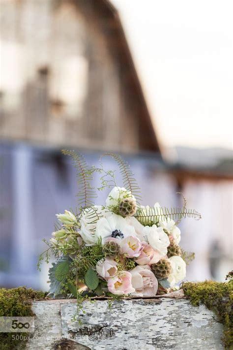 bouquet  arielirving  images bouquet