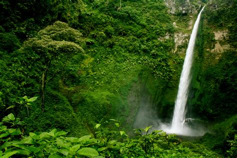 imagenes impresionantes de guatemala fondos de pantalla cascadas guatemala 225 rboles arbusto