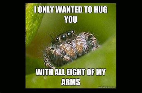 Cute Spider Memes - misunderstood spider meme barnorama