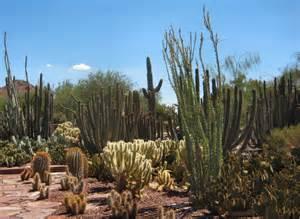 file desert botanical gardens jpg wikimedia commons