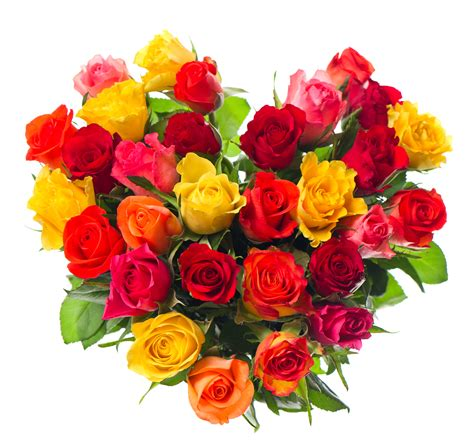 imagenes de flores naturales gratis imagenes de ramos de flores para cumplea 241 os gratis ramos