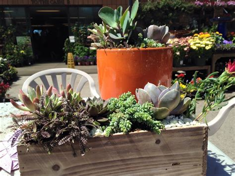 Custom Planter by Fall Entertaining Succulent Custom Planters Sloat
