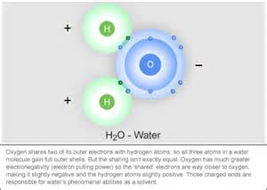 Number Of Protons In Water Water Not On The Periodic Table Reason