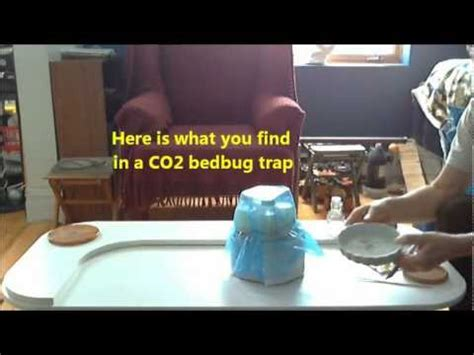 bed bug trap yeast co2 bedbug trap making traps how to make do everything
