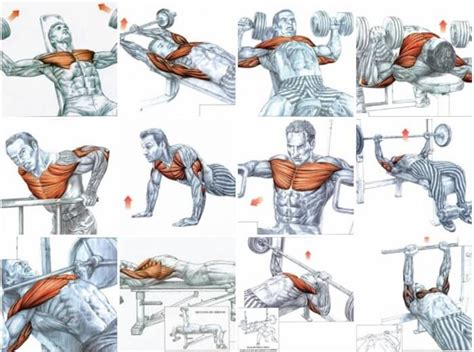 the 15 best chest exercises best of chest exercises healthy fitness training plan