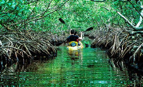 sightseeing   baratang island andamans thrillophilia
