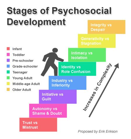 erikson s theory and career development iresearchnet