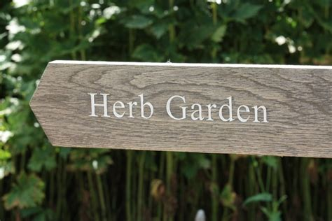 Herb Garden Signs by Free Stock Photos Rgbstock Free Stock Images Herb