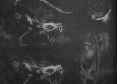 bertarung dengan kawanan tikus siluman di pedalaman papua