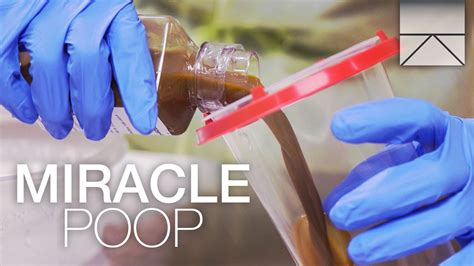 How To Do A Stool Transplant by How Fecal Transplants Can Save Lives