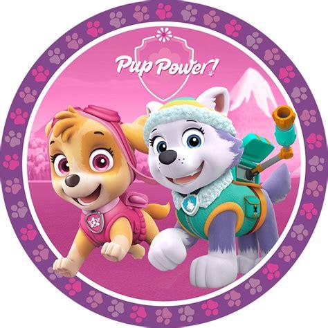 Real Pic Figure Paw Patrol Isi 6 Pcs Bisa Nembak paw patrol pink