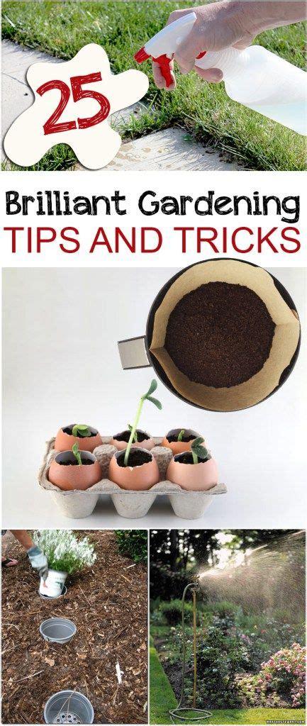 Vegetable Garden Tips And Tricks 25 Brilliant Gardening Tips And Tricks Gardening Tips