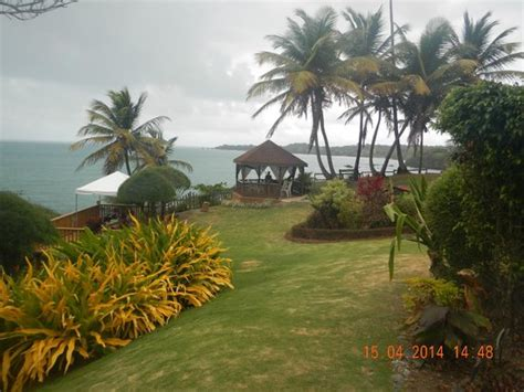 houses in toco rates hosanna toco resort updated 2017 hotel reviews