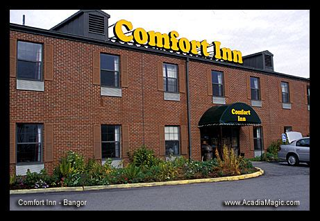 comfort inn maine mall road comfort inn bangor maine mall area