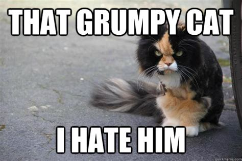 Ru Mad Meme - grumpy cat ain t got shit on me angry cat quickmeme