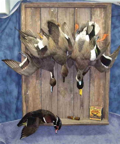 duck hunting home decor 17 best images about hunting home decorating on pinterest