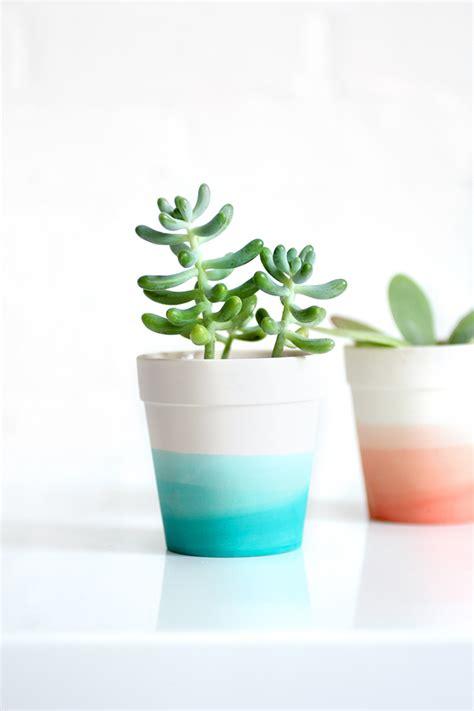 succulent pots 187 my diy dip dye succulent pot