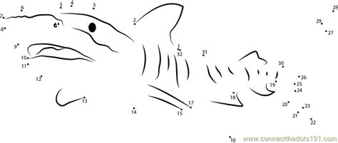 free printable dot to dot shark tiger shark great barrier dot to dot printable worksheet