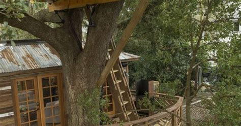 todd graves house the multiple layers of the treehouse that raising cane founder and ceo todd graves and