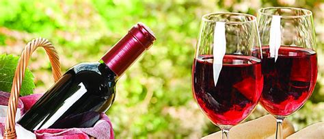 top  red wine brands  india