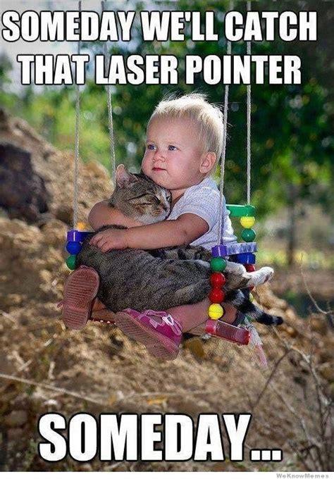 Laser Pointer Meme - kitty laser memes optimistic baby meme someday we ll