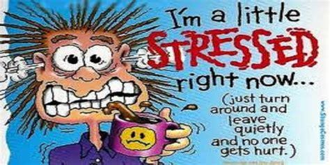 best stress top 5 stress management books