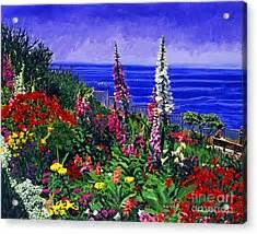 laguna niguel images of america books laguna niguel garden painting by david lloyd