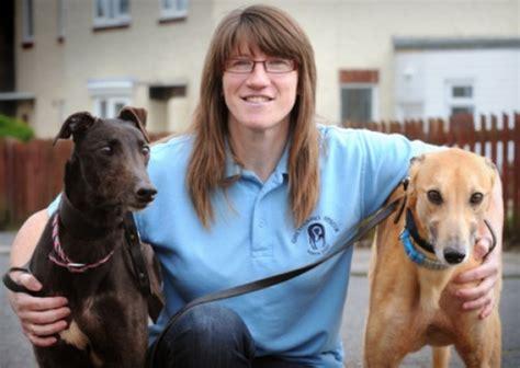 rescue nebraska greyhound rescue ne kingshounds