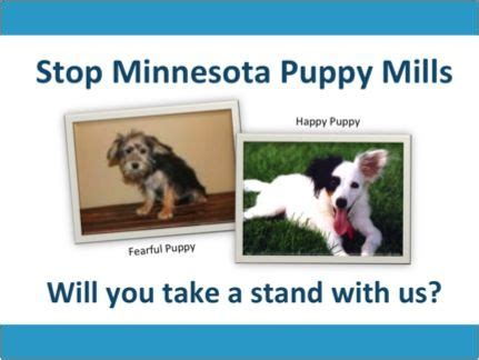 puppy mills in mn stop minnesota puppy mills education advocacy