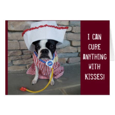 Can I Get A Sia Card With A Criminal Record Boston Terrier Get Well Soon Gifts T Shirts